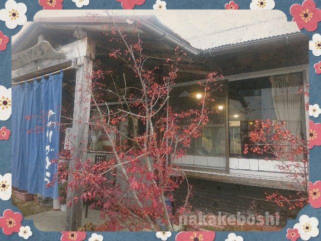 f:id:nakakeboshi:20181210222303j:image