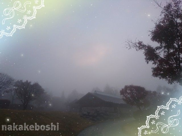 f:id:nakakeboshi:20181210223221j:image