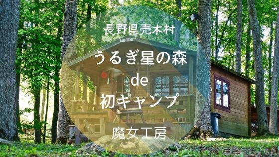 f:id:nakakeboshi:20181210234030j:plain