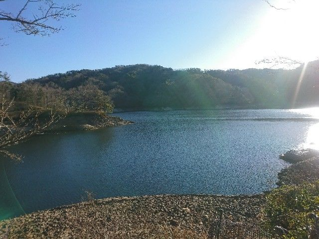 f:id:nakakeboshi:20190114224600j:image