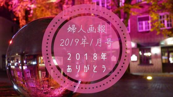 f:id:nakakeboshi:20190131155411j:plain