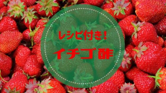 f:id:nakakeboshi:20190319010022j:plain