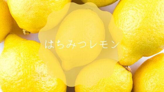 f:id:nakakeboshi:20190416115725j:plain