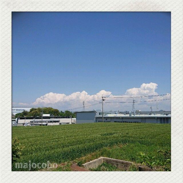 f:id:nakakeboshi:20190504134537j:image