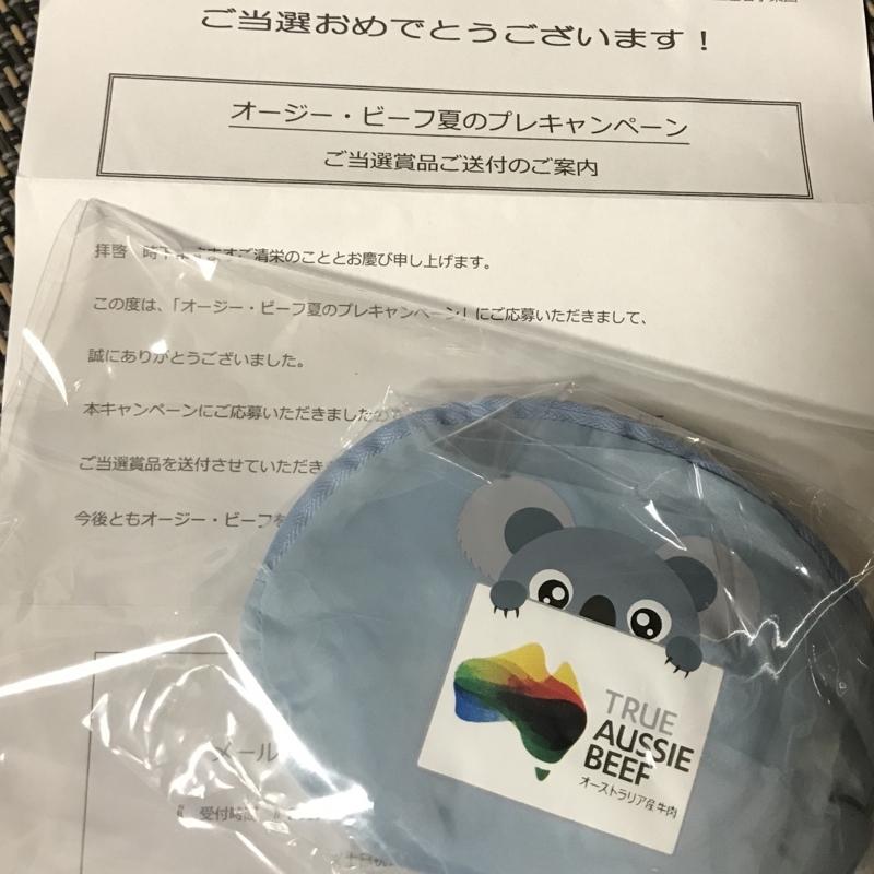f:id:nakamaki:20170717165726j:plain