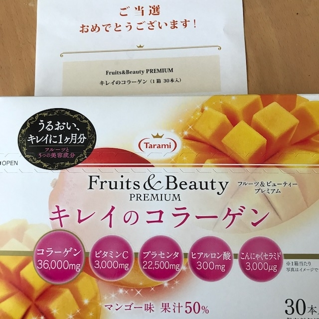 f:id:nakamaki:20170731225127j:plain