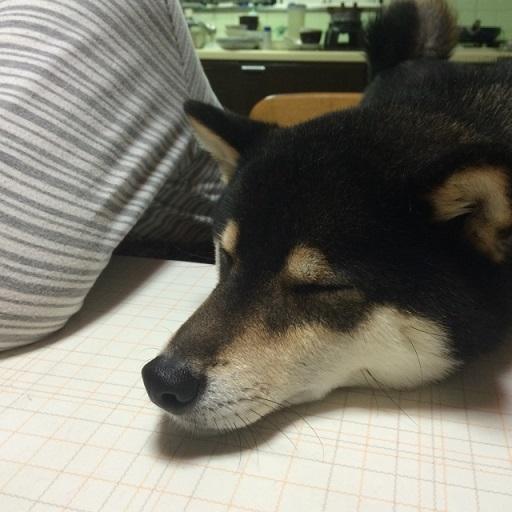 f:id:nakami_midsuki:20161201125140j:plain