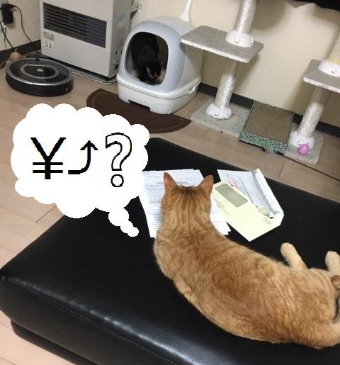 f:id:nakami_midsuki:20170816150908j:plain