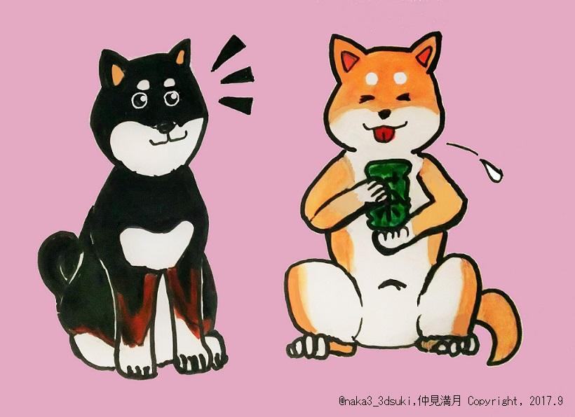 f:id:nakami_midsuki:20170901150955j:plain