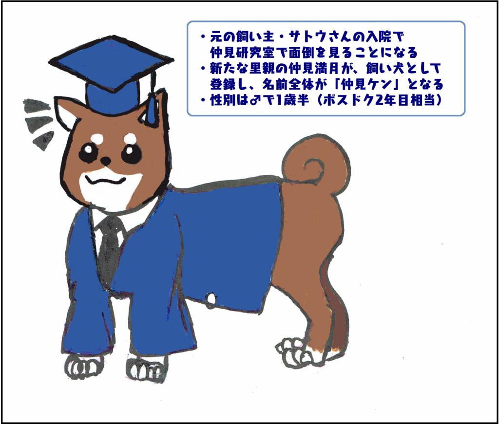 f:id:nakami_midsuki:20171207225705p:plain