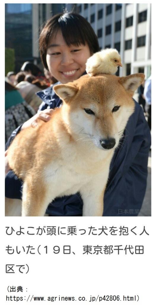 f:id:nakami_midsuki:20180101185445j:plain