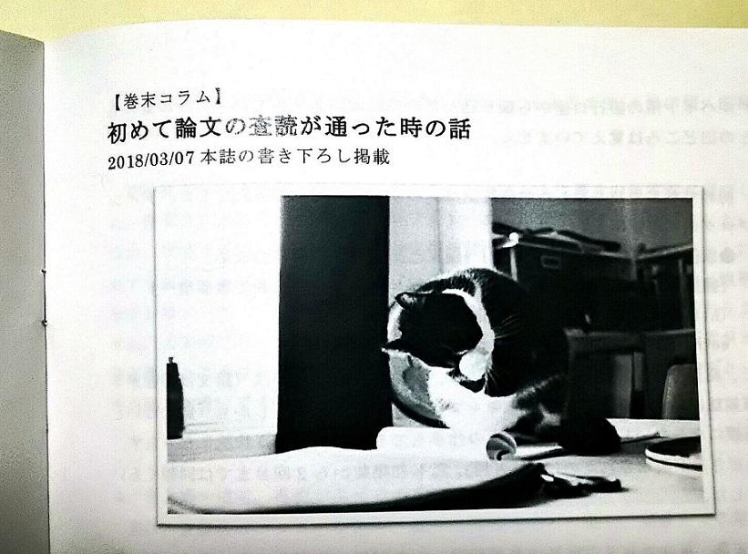 f:id:nakami_midsuki:20180322234520j:plain