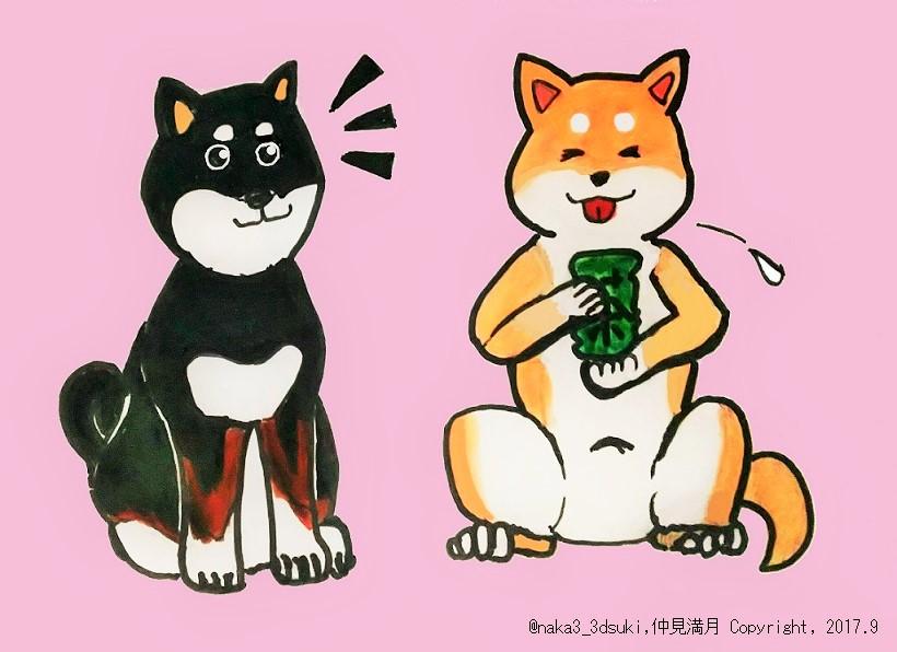 f:id:nakami_midsuki:20181201145330j:plain