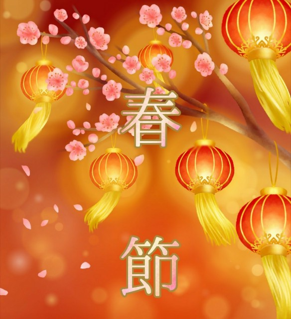 f:id:nakami_midsuki:20190103140054j:image