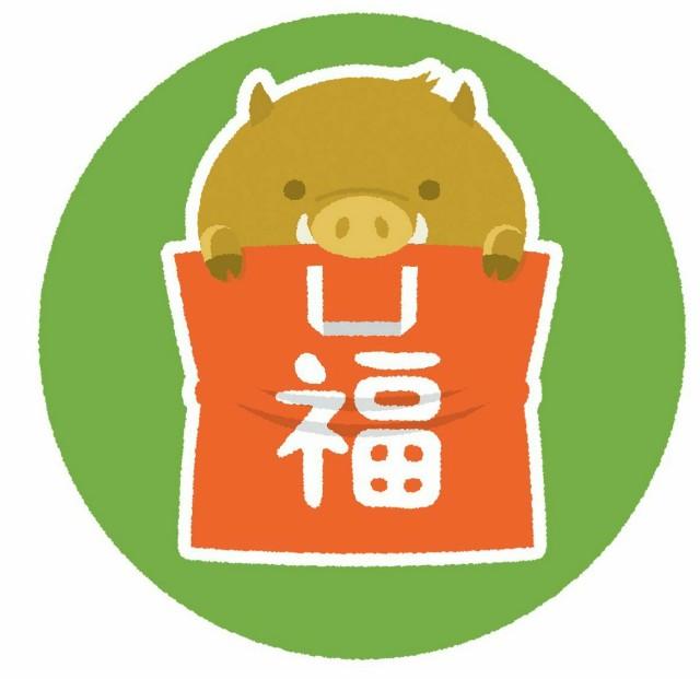 f:id:nakami_midsuki:20190107121702j:image