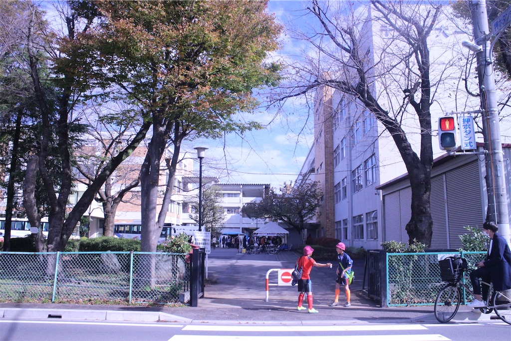 f:id:nakamoto411002716:20161112234459j:image