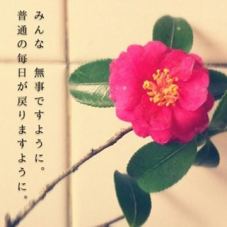 f:id:nakamoto_h:20110312224800j:image