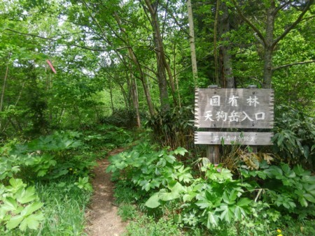 f:id:nakamoto_h:20170601003107j:image