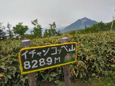 f:id:nakamoto_h:20170620235058j:image