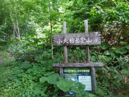 f:id:nakamoto_h:20170711234203j:image