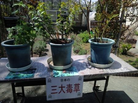 f:id:nakamoto_h:20180511230706j:image