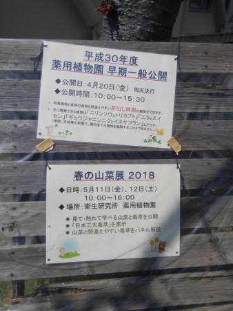 f:id:nakamoto_h:20180511230720j:image