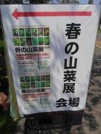 f:id:nakamoto_h:20180511230732j:image