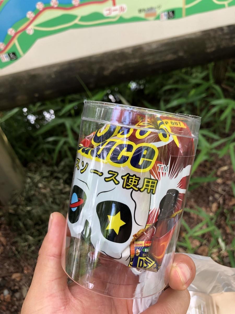f:id:nakamura001:20190612215605j:plain