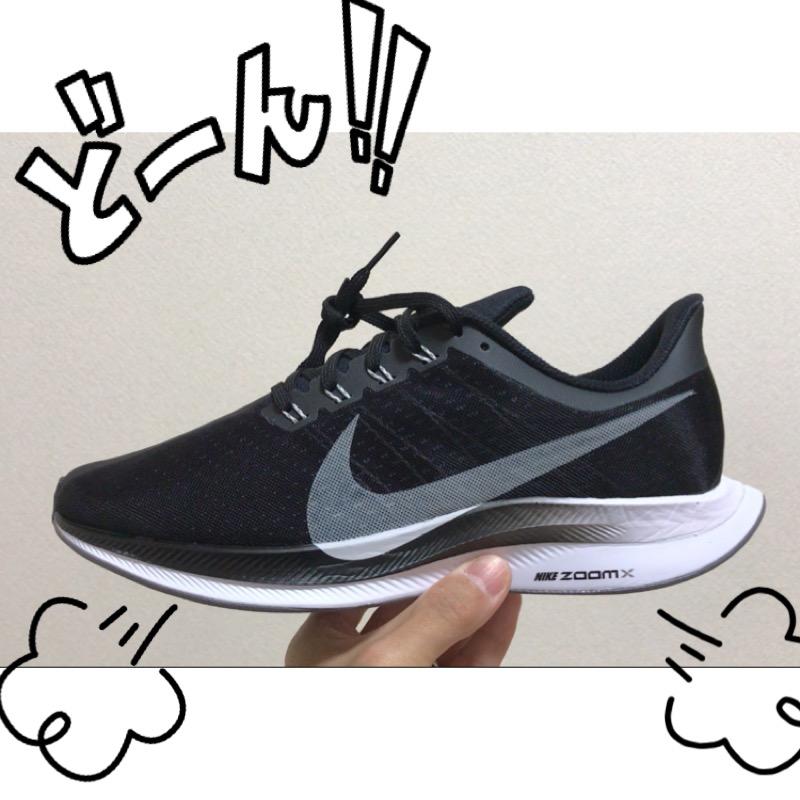 f:id:nakamurablog-kenbo:20190118142518j:plain