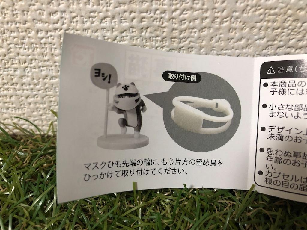 f:id:nakamurafu-fu:20210121185858j:image
