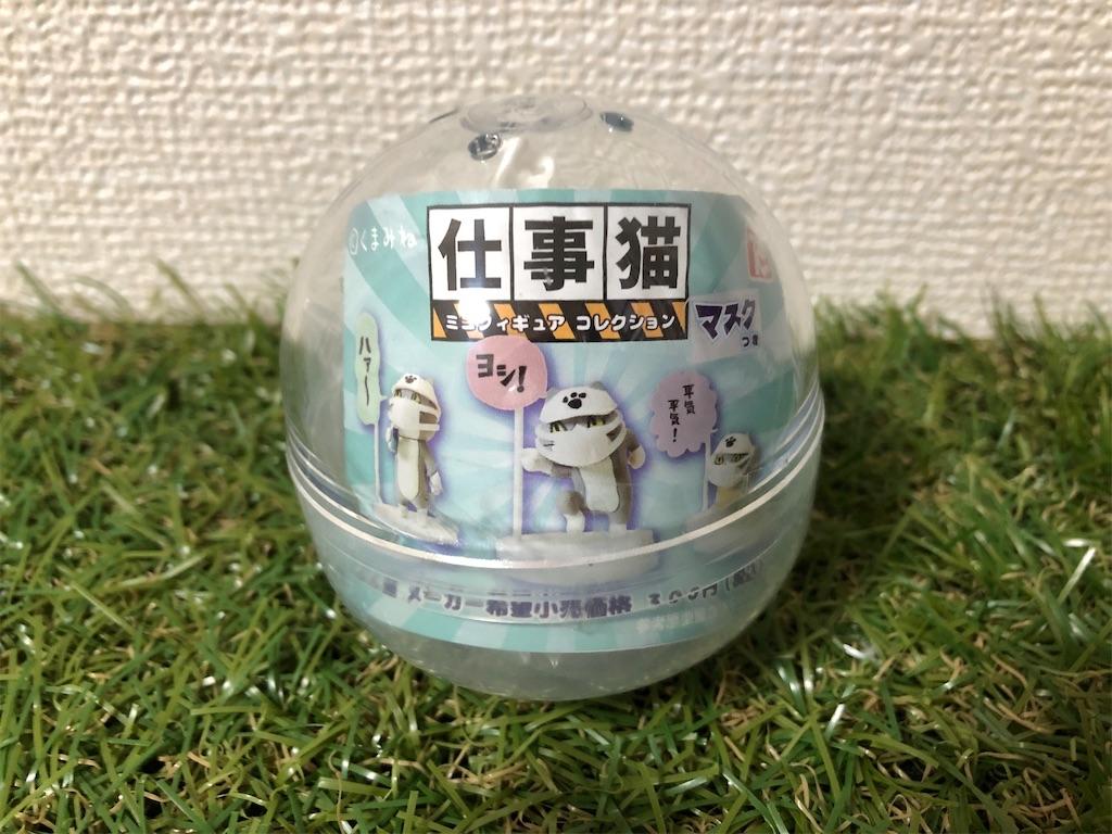 f:id:nakamurafu-fu:20210121185902j:image