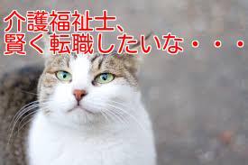 f:id:nakamuramail_46:20170604195413j:plain