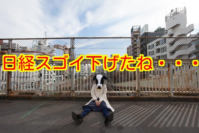 f:id:nakamuramail_46:20180205225620j:plain
