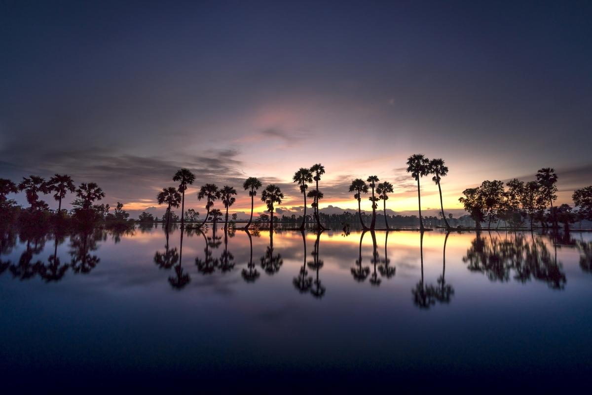 夜明けの水面