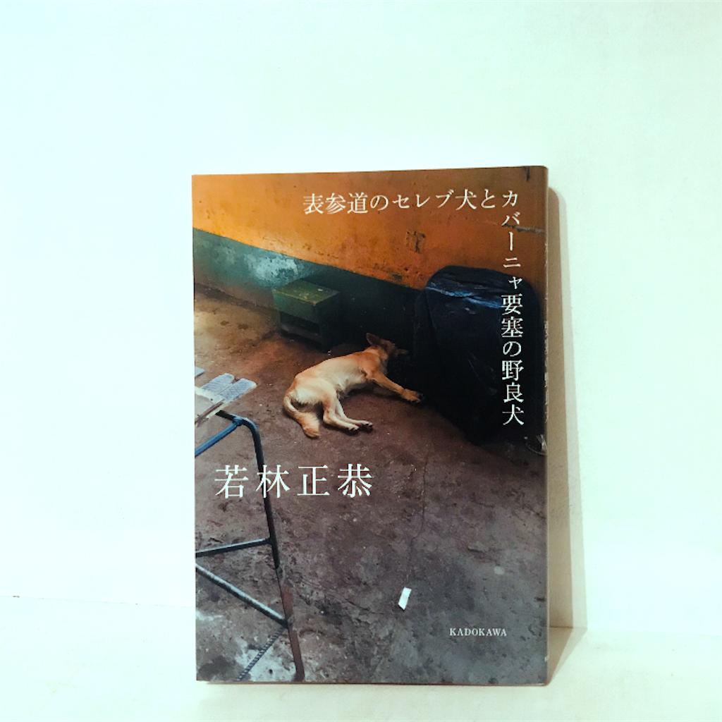 若林正恭氏の著書 表参道のセレブ犬とカバーニャ要塞の野良犬