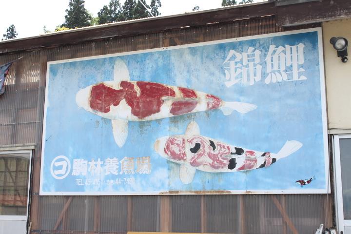 駒林養魚場の看板