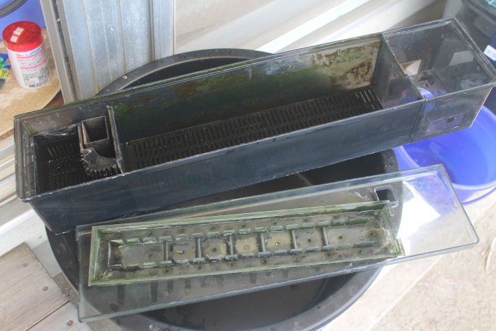 清掃前の濾過槽