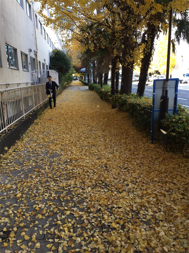 f:id:nakanishi-satoshi:20161206185628j:image