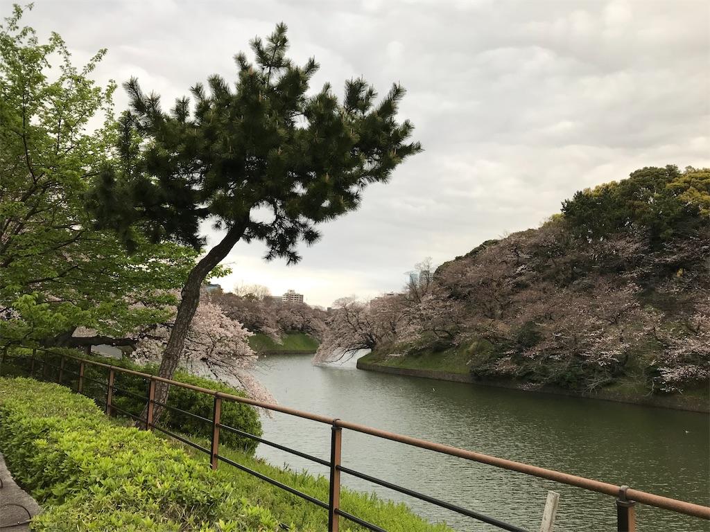 f:id:nakanishi-satoshi:20200323084700j:image