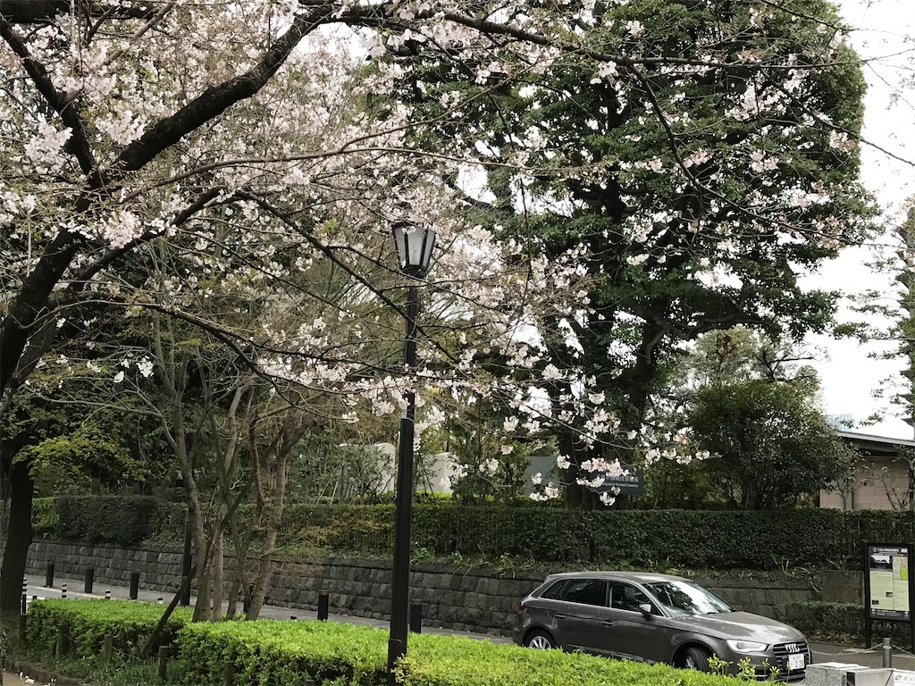 f:id:nakanishi-satoshi:20200323084706j:image
