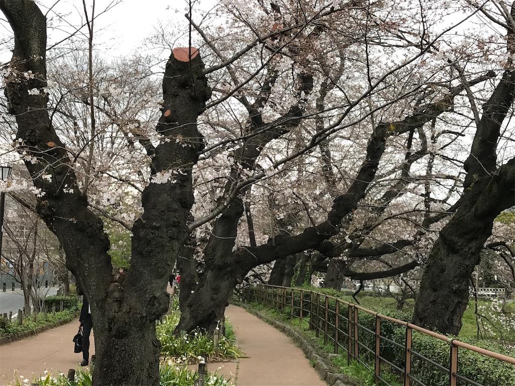 f:id:nakanishi-satoshi:20200323084712j:image
