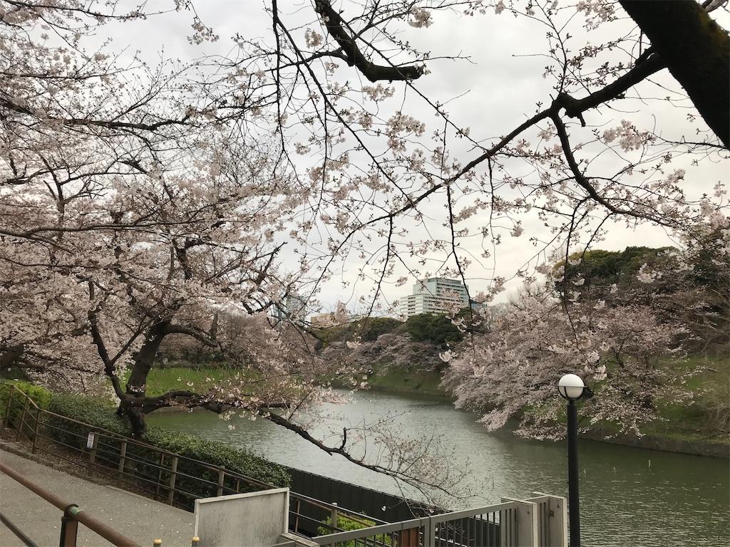 f:id:nakanishi-satoshi:20200323090043j:image