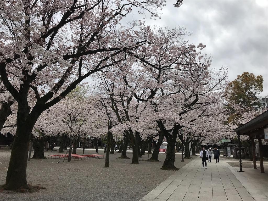 f:id:nakanishi-satoshi:20200329133144j:image