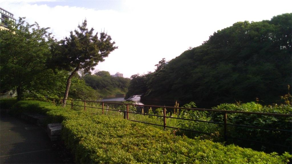 f:id:nakanishi-satoshi:20200511081447j:image