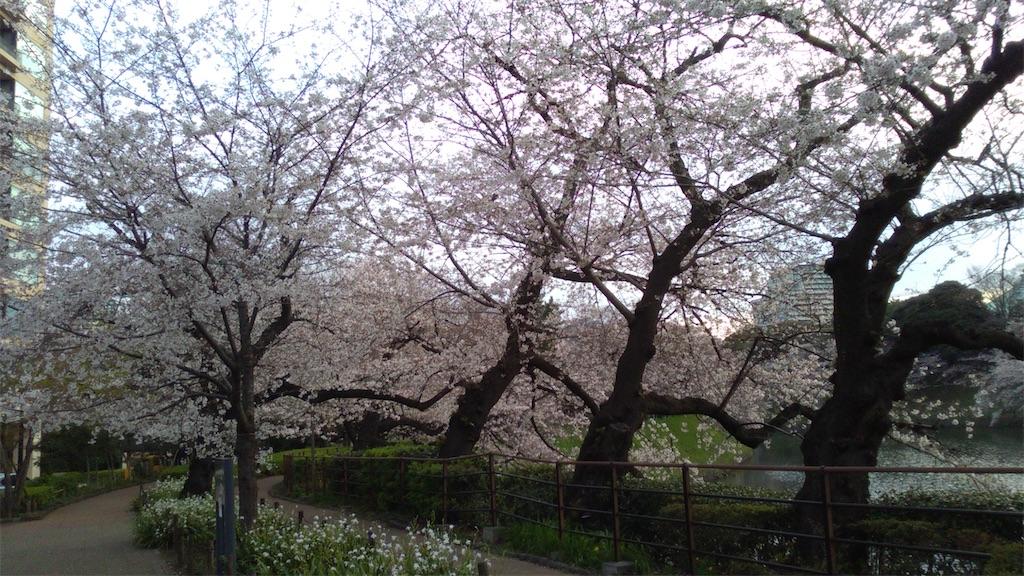 f:id:nakanishi-satoshi:20200511083300j:image