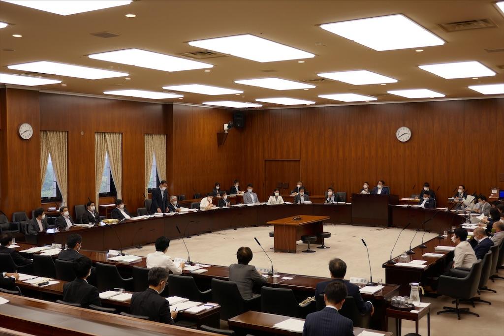 f:id:nakanishi-satoshi:20200603050421j:image