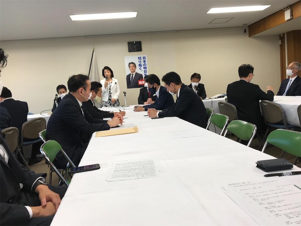 f:id:nakanishi-satoshi:20200625182005j:image