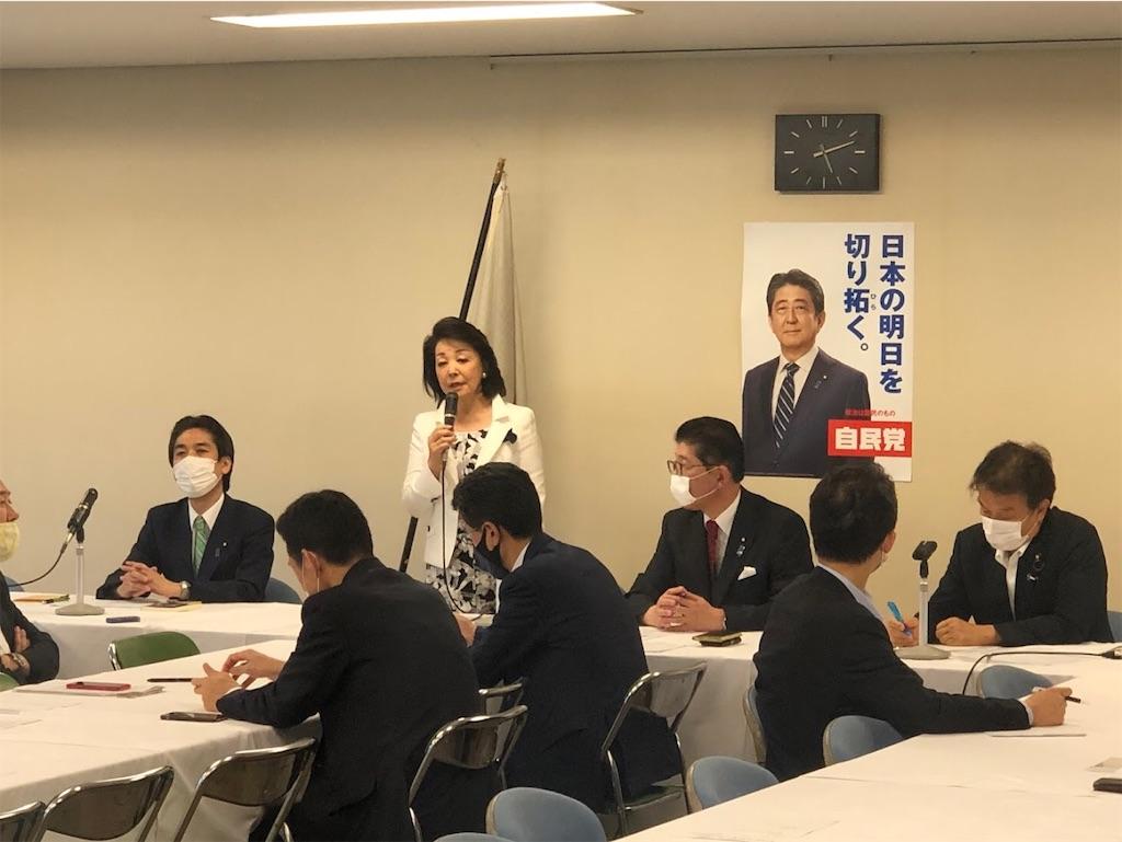 f:id:nakanishi-satoshi:20200626142817j:image