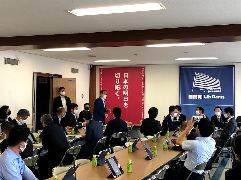 f:id:nakanishi-satoshi:20210615124947j:image