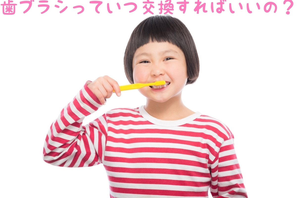 f:id:nakanobushika:20190327074714j:plain